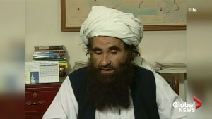 Founder of militant Afghan Haqqani network dies: Taliban