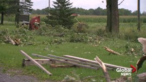 Microburst blows through Rigaud, Saint-Lazare and Hudson