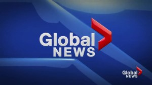 Global News at 5 Lethbridge: Mar 29