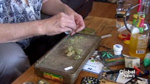 Municipalities set to grapple with the problem of home-grown weed