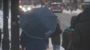Inclement weather prompts bus cancellations throughout much of the Kingston area