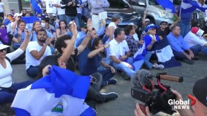 Nicaraguan opposition says dozens arrested in banned protests