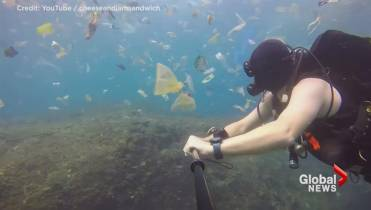 So Much Plastic Diver S Video Captures Garbage Filled Waters Off