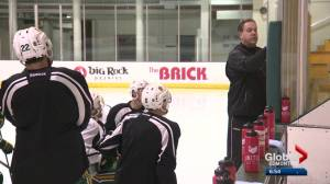 Alberta Golden Bears hockey team heads to Denver for a pair of games