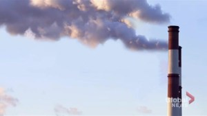 What is carbon pricing and will it work?