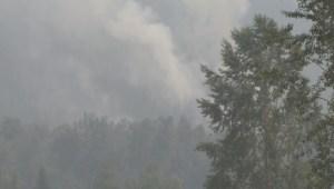 Ashcroft Reserve fire tour