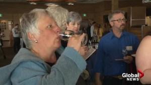 Okanagan Falls celebrates special wine status