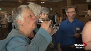 Okanagan Falls celebrates special wine status (01:43)