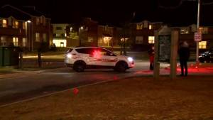 2 stabbed, 1 shot with pellet gun at residence near Brock University