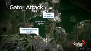 AUDIO: 911 call of Walt Disney World alligator attack released