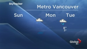 BC Evening Weather Forecast: Jan 3