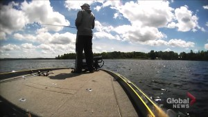Tips on reeling in walleye as season set to kick off