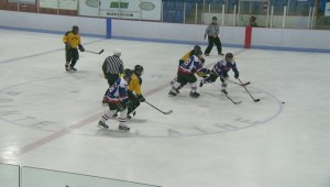 Seniors lace up for hockey fundraiser