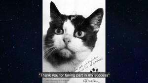 The history of Félicette, 1st cat launched into space 54 years ago