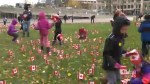 Torontonians honour veterans leading up Remembrance Day