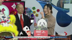 Learn more about Calgary's 2018 Chinese Lunar New Year Festival