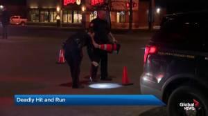Calgary fatal hit and run
