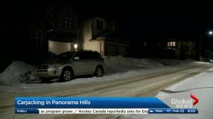 Carjacking in Panorama Hills