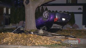 Driver flees scene after crash in Etobicoke