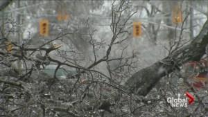 Toronto prepares for ice storm