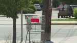 Fundraiser reacting to proposed Vernon shopping cart ban collects over $1,100 in donations