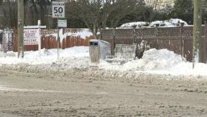 Fraser Valley still feeling the effects of the winter snow
