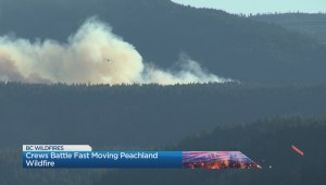 Evacuation alert issued for Finlay Creek wildfire near Peachland, B.C.