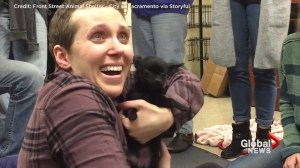 Woman with brain cancer littered with puppies, breaks down crying