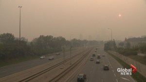 Persistent smoke in Calgary affects people and animals