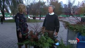 Mark Cullen's evergreen decorating tips