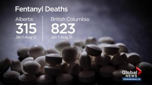 Health ministers look for help controlling opioid crisis