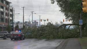 Wind storm causes havoc throughout Metro Vancouver