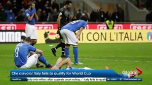 Italy fails to qualify for the World Cup