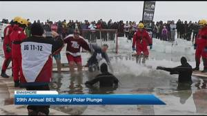 2019 Polar Plunge at Rotary Park
