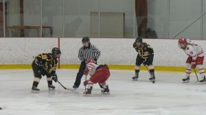 Hundreds flock to Wilcox, Sask. for largest female hockey tournament in Western Canada