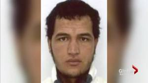 More arrests made in Berlin attack