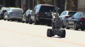 RAW: LAPD bomb squad send robot to detonate suspicious package