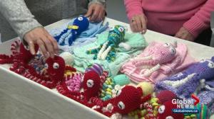 How stuffed octopuses are being used to help fragile babies