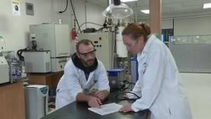 Loyalist College teaches cannabis industry skills
