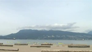 Vancouver Park Board to test liquour sales at two beaches