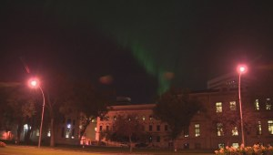 WATCH: Northern lights dance over Winnipeg