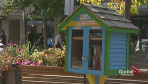 Salmon Arm book exchanges damaged by vandals