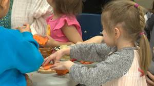 Fears Alberta's $25-a-day childcare pilot project ending abruptly unfounded: minister (01:45)