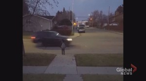 Video of cars whizzing by boy trying to cross Calgary street raises questions on pedestrian right-of-way