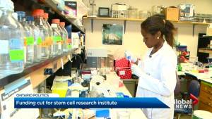 Funding Pulled for Stem Cell Research Institute