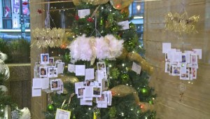 In The Mix: Festival of Trees