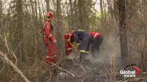 Alberta firefighter video brings us up close to wildfire containment efforts (03:19)