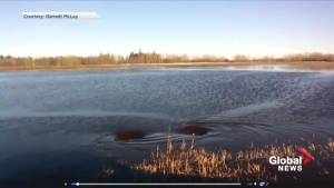 Flooding in Westlock County