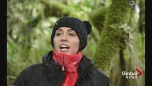 Miley Cyrus visits BC to save wolves