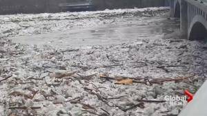Massive wall of ice continues to block flow of Grand River through Brantford, Ont.